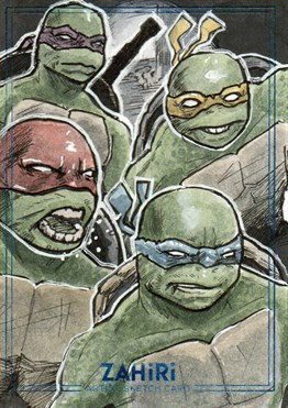 Teenage Mutant Ninja Turtles : Zahiri Sketch Card art by Yiğit Yerlikaya